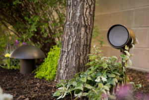 Triad Garden Array Speakers
